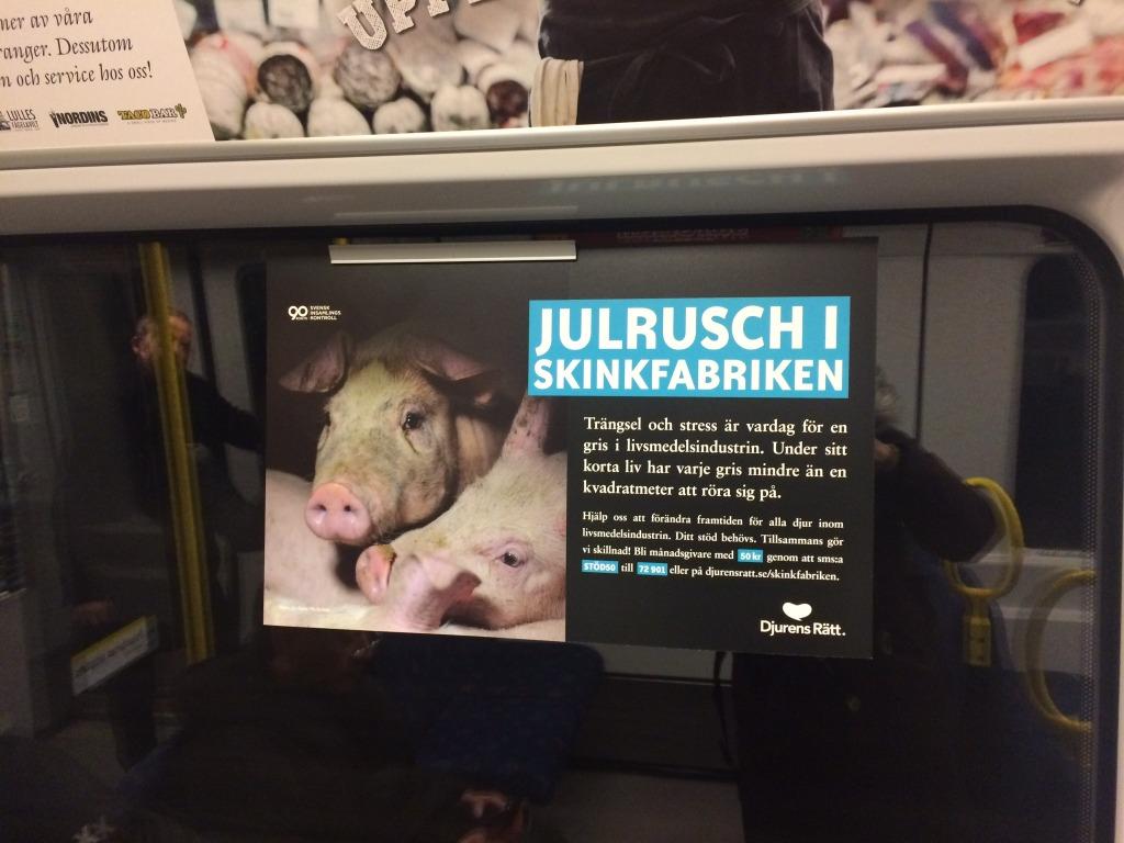 Djurens rätts reklamkampanj