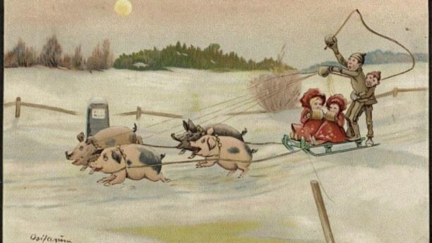 Julkort med släde och grisar av Oscar Laerum